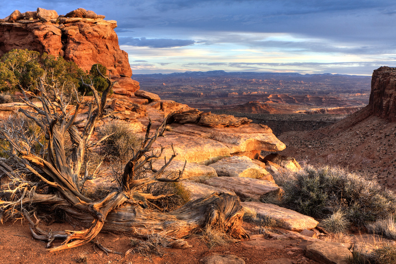 Canyonlands Grand View