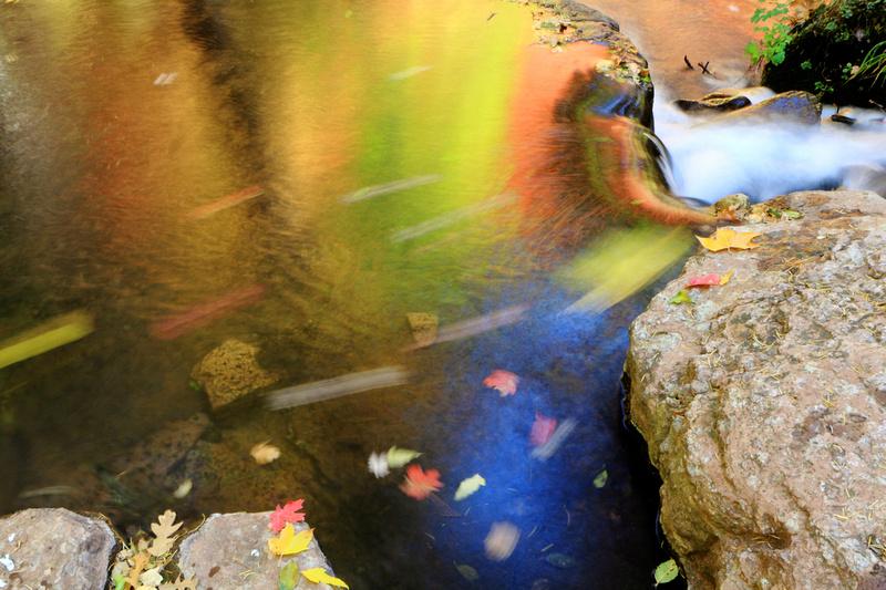 Flowing Colors Of Horton Creek