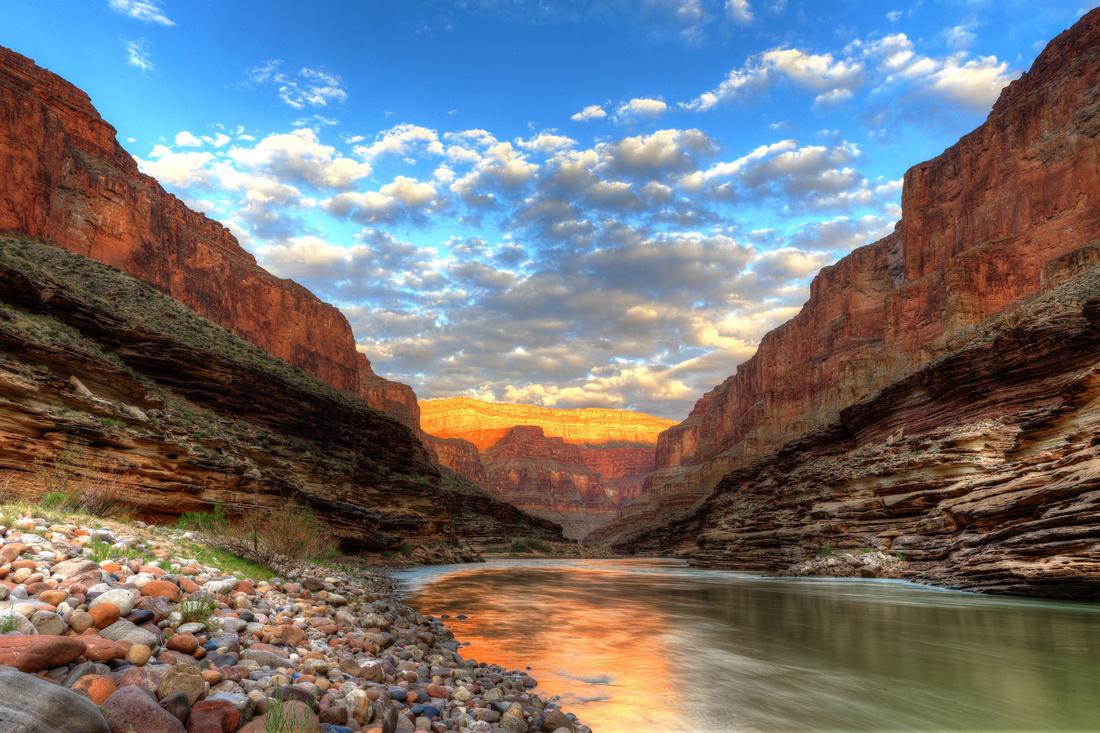 Grand Canyon Morning Glories