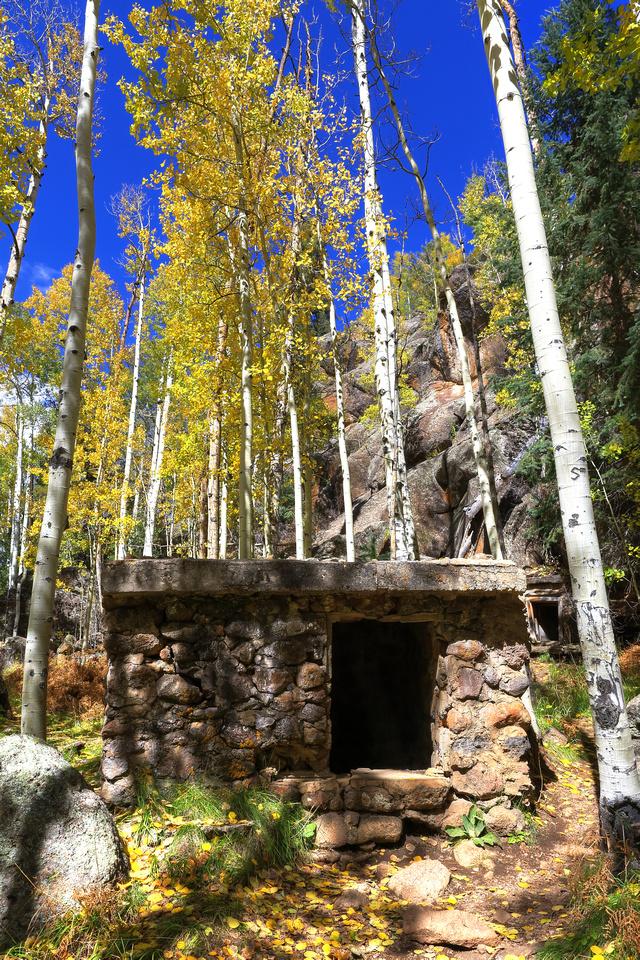 Autumn At Veit Springs